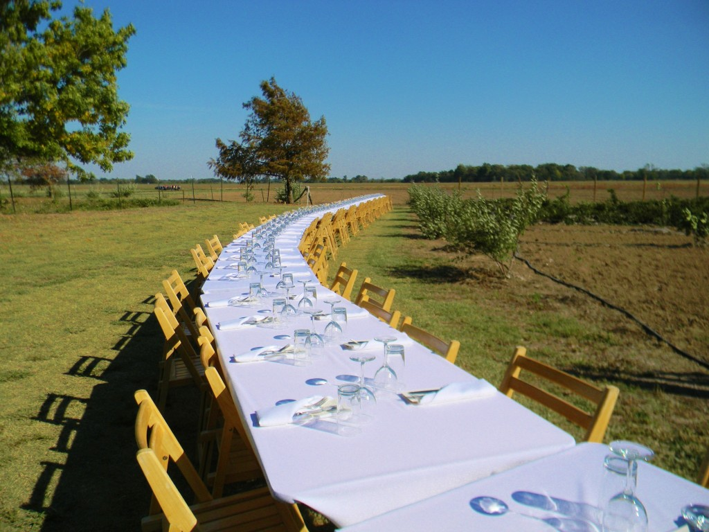 Whitton Farms table Photo by Deborah Fagan Carpenter