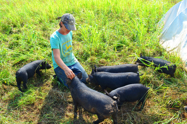 4.Jo with American Guinea Hogs