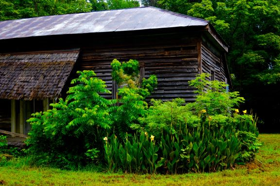 Exploring the South – PORCHSCENE: Exploring Southern Culture
